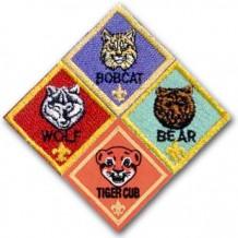 Cub Scouts in West Houston