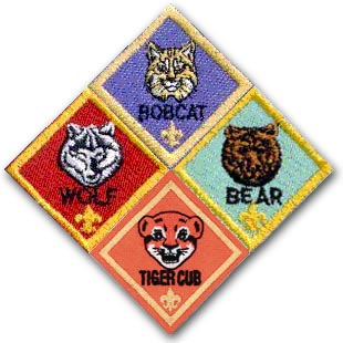 Cub Scouts in West Houston